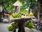 Fintech for Financial Inclusion in Vietnam
