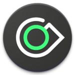 ongo e-money