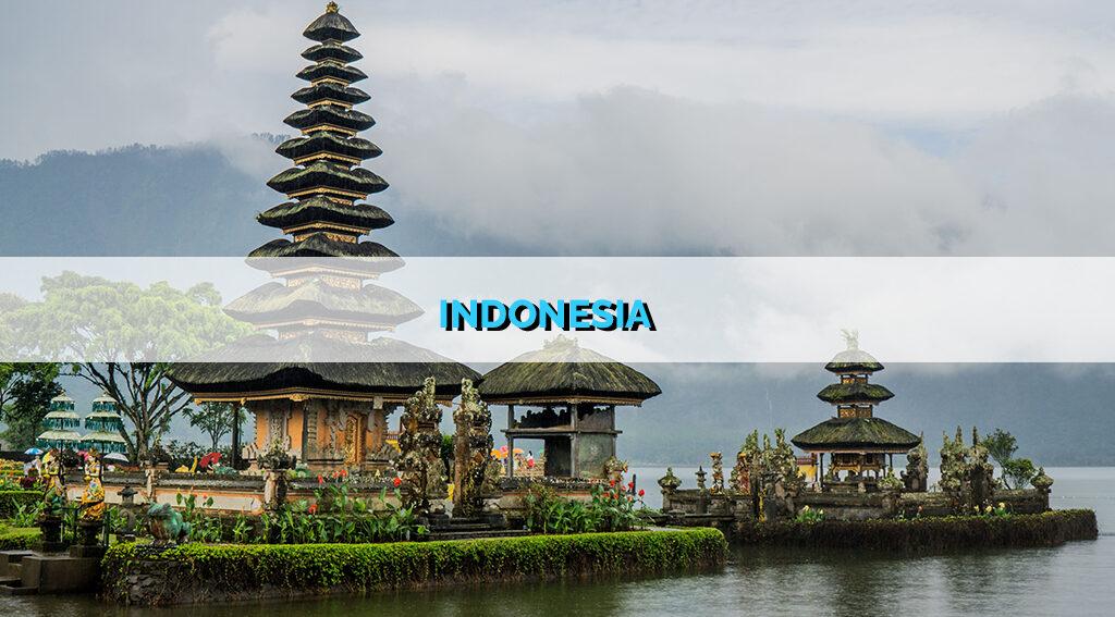 INDONESIA STARTUP REPORT