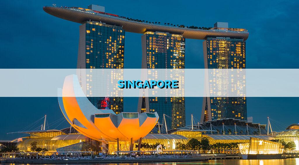 SINGAPORE STARTUP REPORT