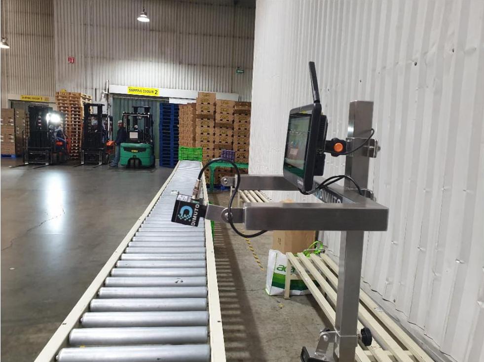 DiMuto Blockchain-Durian