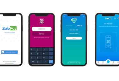 Overview of Vietnam's Major E-Wallet and Mobile Payment Players